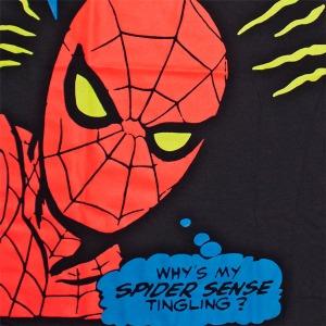 spider-sense - Why